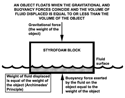 how does surface area affect buoyancy
